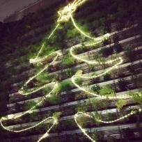 Living Tree - Happy Holidays (December 2012)