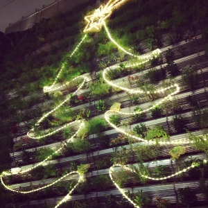 Living Tree - Happy Holidays (December 2012)