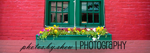 Photos by Shew - header image