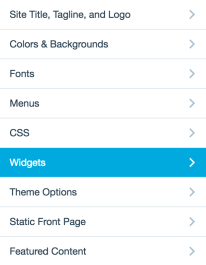 customizer panels-widget