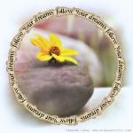 dawn-flower-c2a9-amanda-lakey-uniquesochic-com