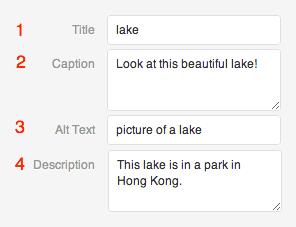image-settings
