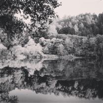 Instagram filter: Willow