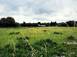 The countryside.