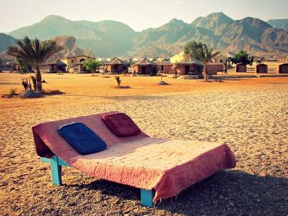 A beach where the desert meets the sea.