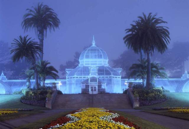 Conservatory of Flowers, SF. f/8, 20min, Fuji 64T