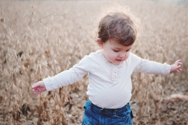 A photo of a toddler in a soybean field in the fall. Photo by Jen Hooks.