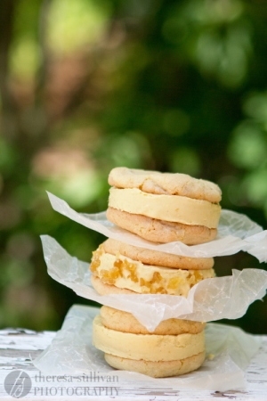 Ginger-Mango Ice Cream Sandwiches, The Craving Chronicles. Great shots of frozen foods *are* doable!