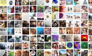 A shocking visual -- a small snapshot of my Instagram page, representing 104 posts I could have made to my blog.