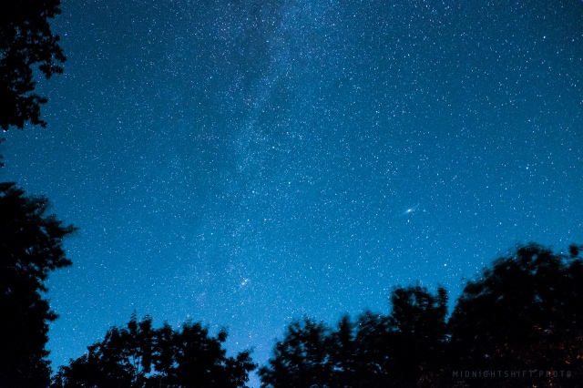A photo of bright stars above a forest in Maine