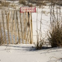 Keeping off the dunes along the shore
